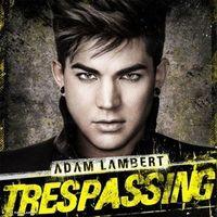 Thumb trespassing 1fff911d 8aac 4ed6 838d c7c917b7bafe